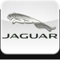 Переходные рамки Jaguar