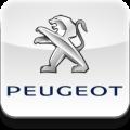 Переходные рамки Peugeot