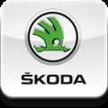 Переходные рамки Skoda