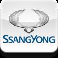 Переходные рамки SsangYong